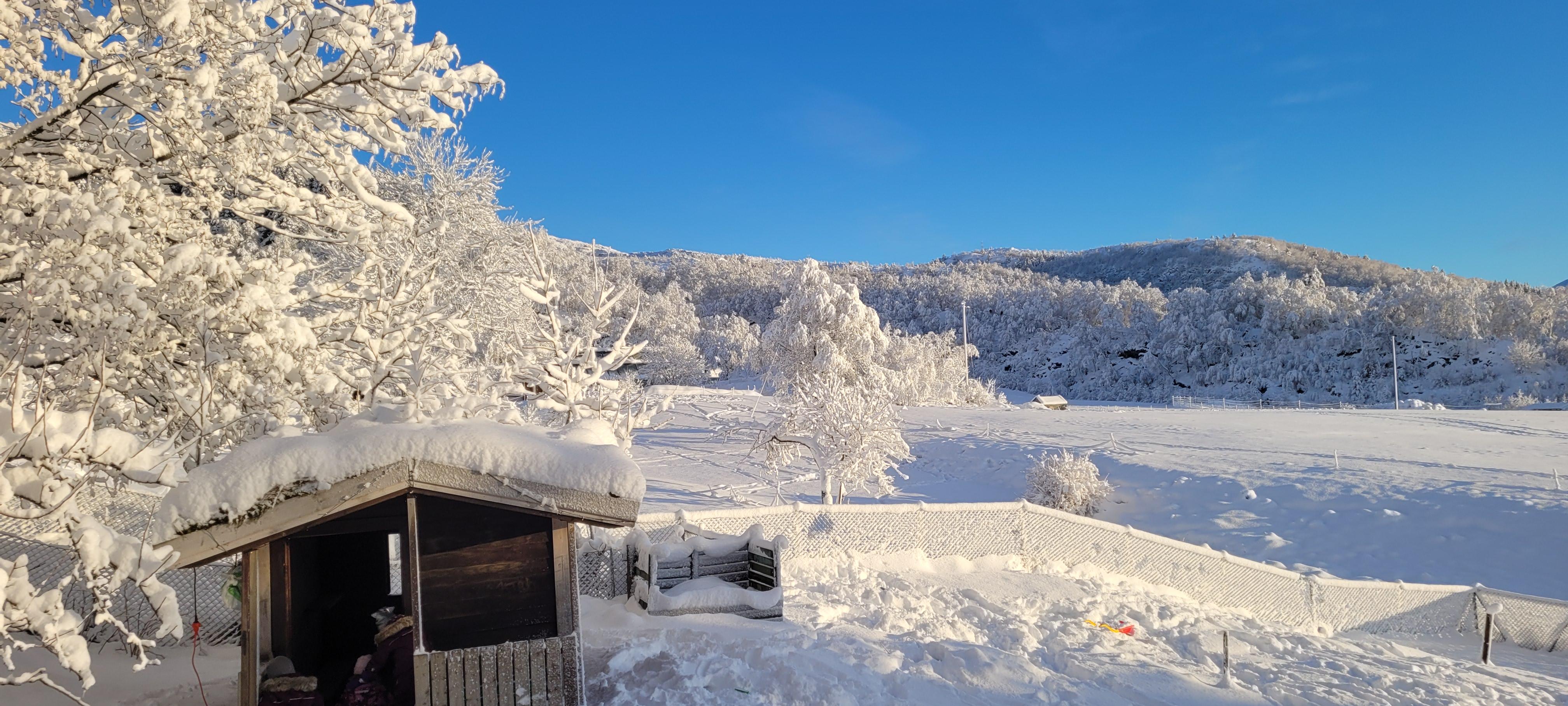 vinterbilde-til-hjemmesiden-2